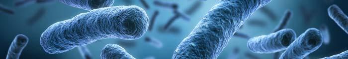 Produits De Spécialité Procelys/Biotech
